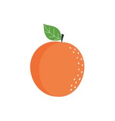 cartoon apricot isolated on white vector image
