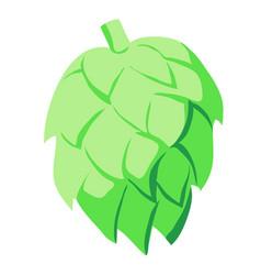 Green hop cone vector