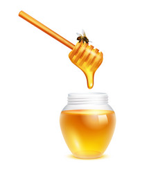 Honey dripping in glass jar vector