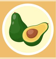 Isolated green avocado piece avocado with pit vector