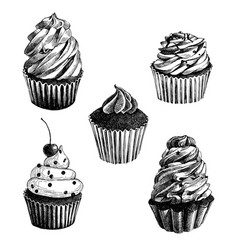 Set of hand drawn cupcakes vector