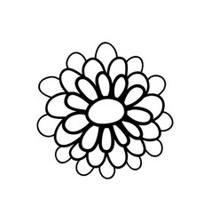 Beauty rose with natural petals vector