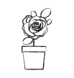 blurred silhouette flowered rose with leaves and vector image vector image