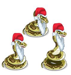 Snake in cap and beard of santa claus vector