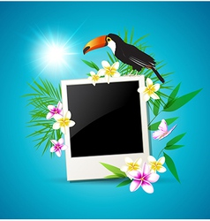 Summer tropical background with toucan vector image
