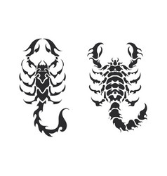 variety tribal scorpion set vector image