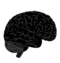 Black human brain vector image