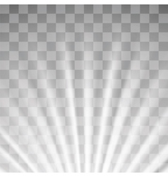 Blurred Sun Rays vector