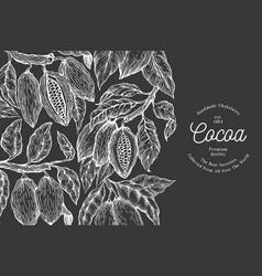 cocoa design template chocolate cocoa beans vector image