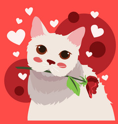 Happy valentines day white cat with rose vector