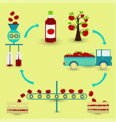 Process tomato sauce vector