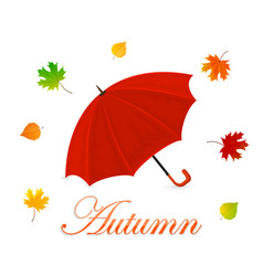 red umbrella and autumn leaves vector image