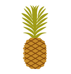 simple pineapple fruit vector image