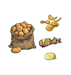 Sketch raw potato bag chips peel set vector