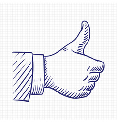 thumbs up like hand sketch vector image