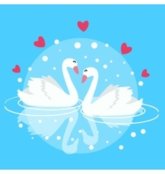 Two swan swimming fall in love couple marriage vector