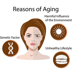 with reasons of aging vector image