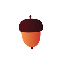 Brown acorn - colorful vector