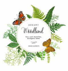 card with ferns and butterflies vector image
