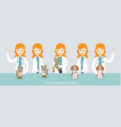 female veterinarian checkup pets vector image