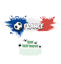 flag of france and football fans vector image