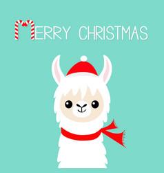 merry christmas llama alpaca baface santa vector image