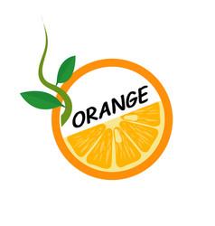 Orange fruit icons flat style vector