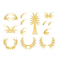 Set of Design Elements with Wheat vector