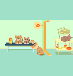 veterinary clinic horizontal banner cartoon style vector image vector image