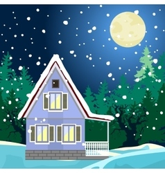 Winter night landscape vector image