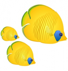 Butterfly fish vector