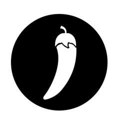 Chilli pepper fresh vegetable icon vector