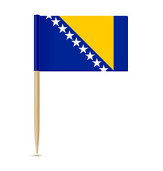flag bosnia and herzegovina vector image