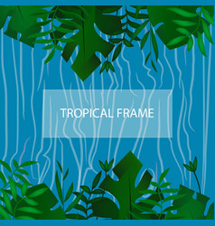 tropic banner design template tropical frame vector image vector image