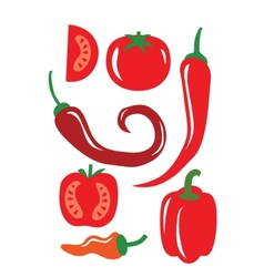 Chili Pepper vector image