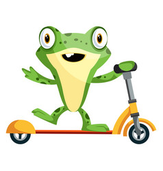 Joyful bafrog riding on a scooter on white vector