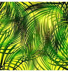 Jungle Palm Leaves Background vector image