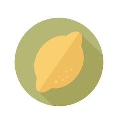 Lemon flat icon with long shadow vector image