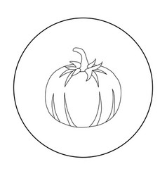 Pumpkin icon outline singe vegetables icon from vector