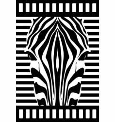 Zebra face vector