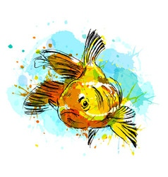 Colored hand sketch fish vector image