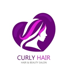 template abstract logo for beauty salon or vector image