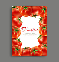 lliustration with realistic tomatoes isolated vector image vector image