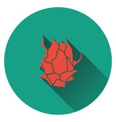 Dragon fruit icon vector image