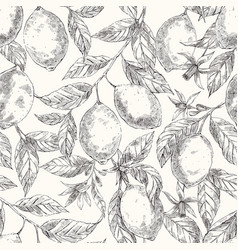 lemons hand drawn seamless sketch pattern vector image