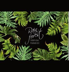 Rain forest banner vector