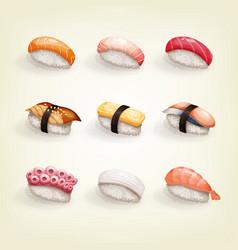 Set various fresh and delicious nigiri sushi vector