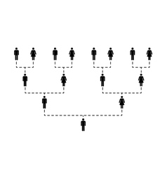 Family tree of several generations on white vector image