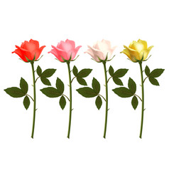 set of beautiful realistic rose vector image vector image