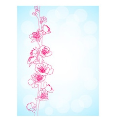 Cherry Blossom vector image